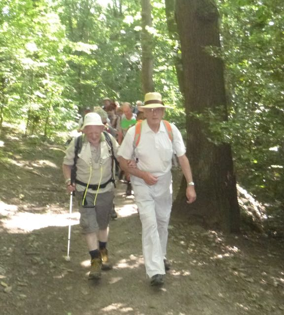 The walkers striding out through Chancet Wood